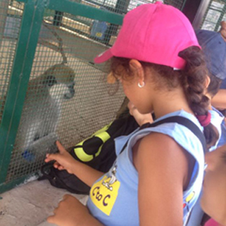 <p>C2c/summer-camps-lebanon/Slide WORKSHOPS</p>